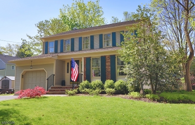 Chatham Boro Single Family Home For Sale: 7 Meadowbrook Rd