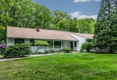Scotch Plains Twp. Single Family Home For Sale: 9 Highlander Dr