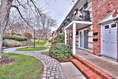 Morris Twp., Morristown Town Condo/Townhouse For Sale: 320 South Street 5n #5