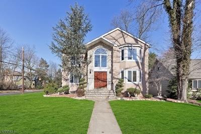 Cranford Twp. Single Family Home For Sale: 101 Hampton St