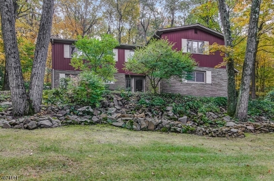 Berkeley Heights Single Family Home For Sale: 57 Winchip Rd