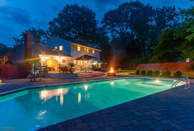 Scotch Plains Twp. Single Family Home For Sale: 11 Gary Ct