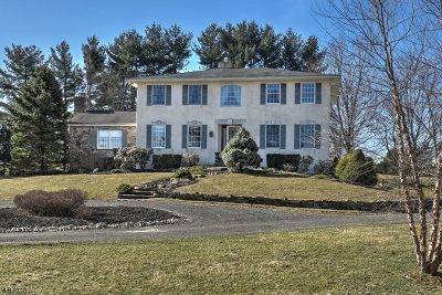 Readington Twp. Single Family Home For Sale: 7 Witherspoon St