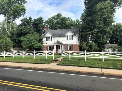 Raritan Boro Single Family Home For Sale: 830 Old York Rd