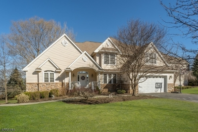 Hardyston Twp. Single Family Home For Sale: 20 Red Oak Dr