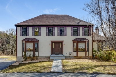 Randolph Twp. Single Family Home For Sale: 3 Colonial Ct
