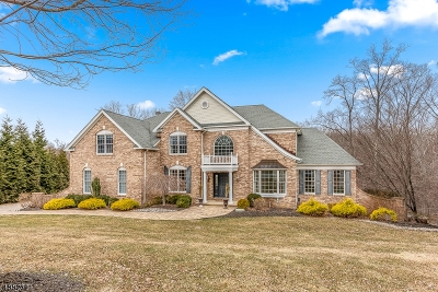 Mount Olive Twp. Single Family Home For Sale: 15 Greenbriar Ct