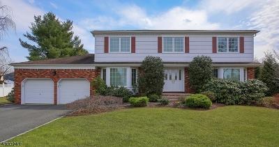 East Hanover Twp. Single Family Home For Sale: 48 Tanglewood Dr