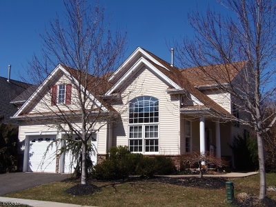 Franklin Twp. Single Family Home For Sale: 28 Jays Cor