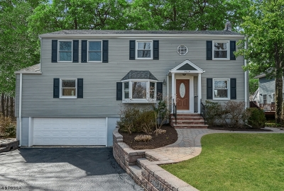 Chatham Boro Single Family Home For Sale: 66 Tallmadge Ave