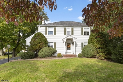 Hanover Single Family Home For Sale: 49 Troy Hills Rd