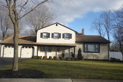 Parsippany-Troy Hills Twp. Single Family Home For Sale: 23 New England Dr