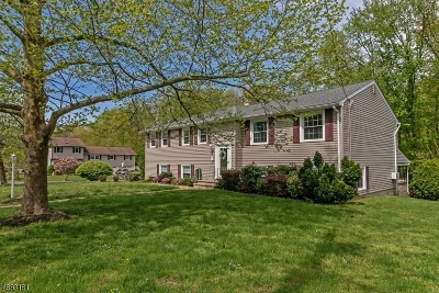 Berkeley Heights Twp. Single Family Home For Sale: 100 Garfield St,
