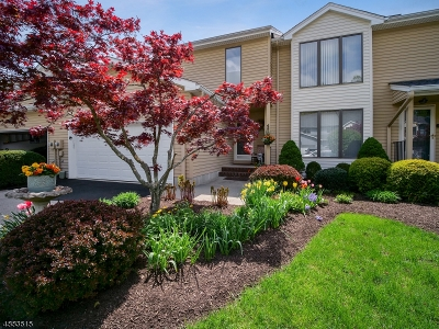 Morristown Town, Morris Twp. Condo/Townhouse For Sale: 36 Raven Dr