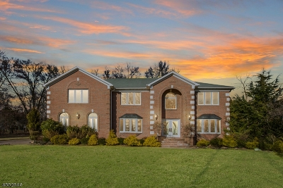 Bridgewater Twp. Single Family Home For Sale: 668 Foothill Rd