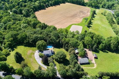 Tewksbury Twp. Single Family Home For Sale: 62 Potterstown Road