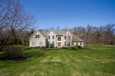 Bethlehem Twp. Single Family Home For Sale: 20 Willever Rd