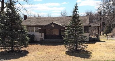 Holland Twp., Milford Boro Single Family Home For Sale: 442 Adamic Hill Rd