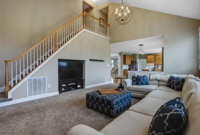 Alexandria Twp., Frenchtown Boro Single Family Home For Sale: 54 Balmoral Dr