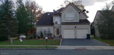 Bridgewater Twp. Single Family Home For Sale: 1 McGovern Ct