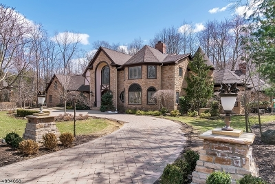Franklin Lakes Boro Single Family Home For Sale: 706 Horseshoe Trl