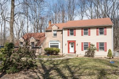 Glen Gardner Boro, Hampton Boro, Lebanon Twp. Single Family Home For Sale: 63 Old Readingsburg Rd