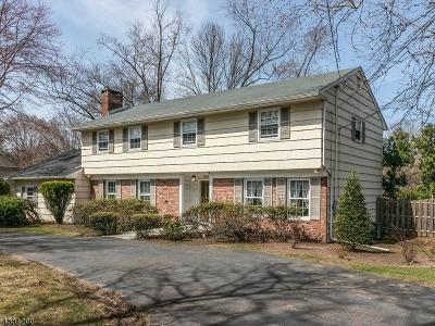 Scotch Plains Twp. Single Family Home For Sale: 1081 Raritan Rd