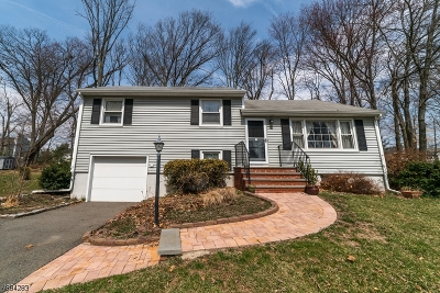 Hanover Single Family Home For Sale: 18 Vincent Ter