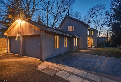 Millburn Twp. Single Family Home For Sale: 978 S Orange Ave