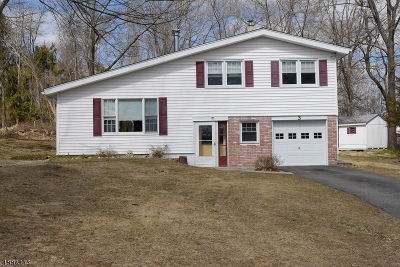 Sparta Twp. Single Family Home For Sale: 3 N White Birch Ter