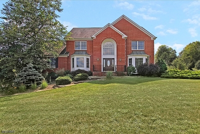 Denville Twp. Single Family Home For Sale: 2 Appletree Ln