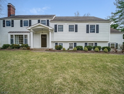 Chatham Twp Single Family Home For Sale: 80 May Dr