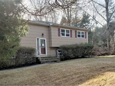 East Amwell Twp. Single Family Home For Sale: 13 Toad Ln