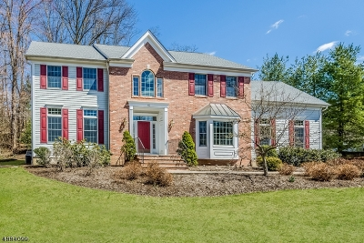 Chatham Twp Single Family Home For Sale: 82 Southern Blvd