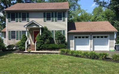 Berkeley Heights Twp. Single Family Home For Sale: 6 Woglum Pl