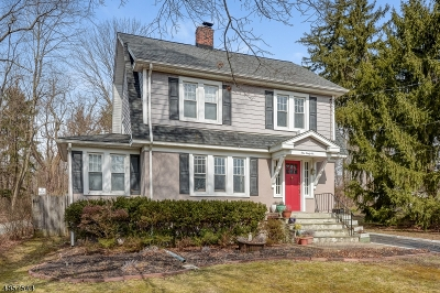 Madison Single Family Home For Sale: 146 Central Ave