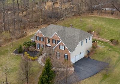Bethlehem Twp., High Bridge Boro Single Family Home For Sale: 11 Old Schoolhouse Rd