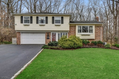 Berkeley Heights Twp. Single Family Home For Sale: 24 Webster Dr
