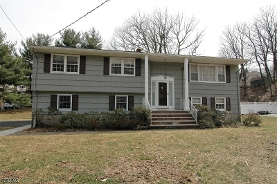 Parsippany Single Family Home For Sale: 1 S Highview Rd