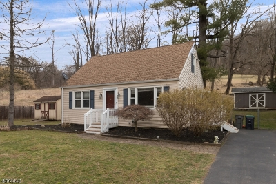 Holland Twp., Milford Boro Single Family Home For Sale: 650 Riegelsville Rd.