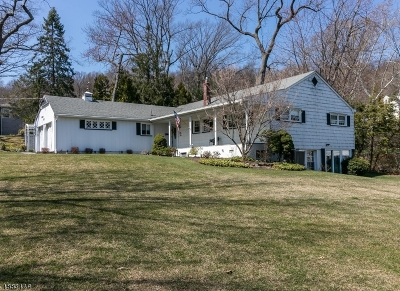 Mountainside Boro Single Family Home For Sale: 344 Short Dr