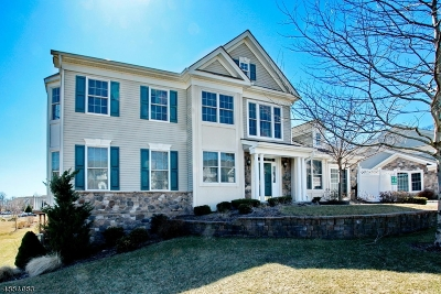 Woodland Park Condo/Townhouse For Sale: 33 Graphite Dr