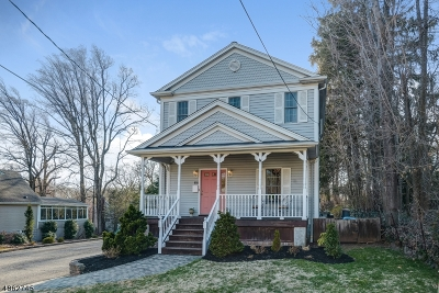 Berkeley Heights Twp. Single Family Home For Sale: 64 Hillside Ave
