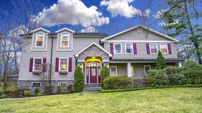 Springfield Twp. Single Family Home For Sale: 10 Far Hills Rd