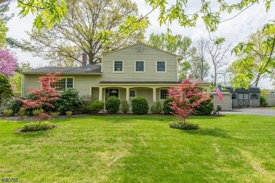Bernards Twp. Single Family Home For Sale: 55 Fairview Dr, East
