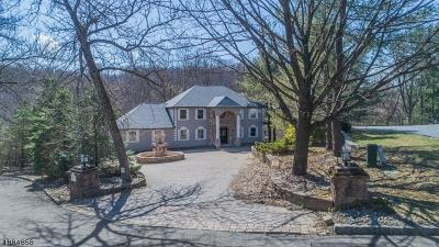 Randolph Twp. Single Family Home For Sale: 8 Meadow Lark Ct
