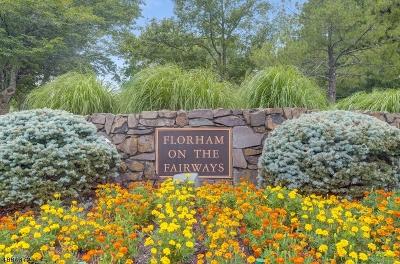 Florham Park Boro Rental For Rent: 4 Dearburn Ct #1.84