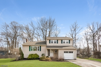 Berkeley Heights Twp. Single Family Home For Sale: 285 River Bend Rd
