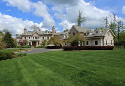 Mendham Boro, Mendham Twp. Single Family Home For Sale: 1 Pine Hollow Ln