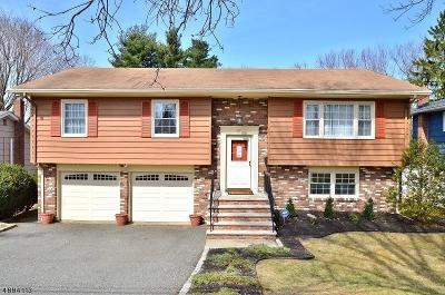 Roseland Boro Single Family Home For Sale: 22 Lincoln St